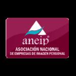 Aneip